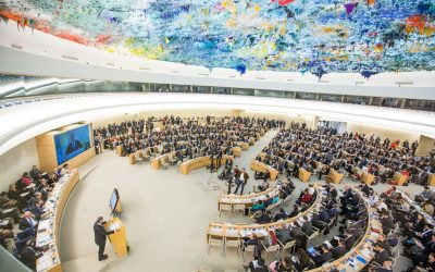 Fobzu joins NGOs in condemning UK dereliction of responsibility at the UN Human Rights Council